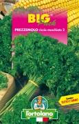PREZZEMOLO Riccio muschiato 2