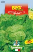 LATTUGA Great Lakes 118 o brasiliana