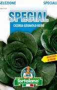 CICORIA Grumolo Nero