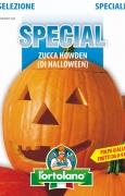 Zucca Howden (di Halloween)