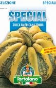 Zucca Americana Tonda