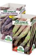 ASPARAGO - SCATOLA DA 10 ZAMPE