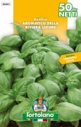 BASILICO Aromatico della Riviera Ligure (ex genovese)