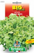 LATTUGA Salad bowl