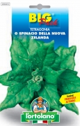 TETRAGONIA o Spinacio della Nuova Zelanda