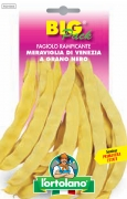 FAGIOLO rampicante Meraviglia di Venezia a grano nero