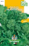 RAPA DA CIME Novantina San Marzano riccia
