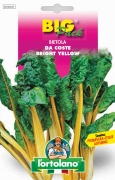 BIETOLA Da coste bright yellow