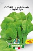 CICORIA da taglio bionda a foglie larghe