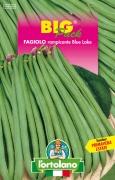 FAGIOLO rampicante Blue Lake