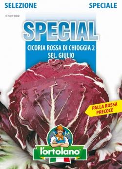 CICORIA Rossa di Chioggia 2 sel.Giulio (Precoce)