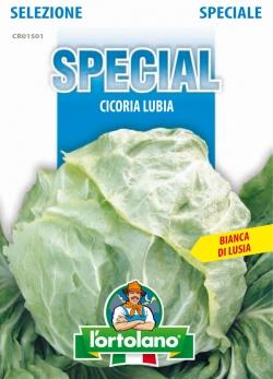 CICORIA Lubia (Bianca di Luisa)