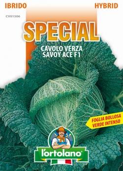 CAVOLO Verza Savoy Ace F1