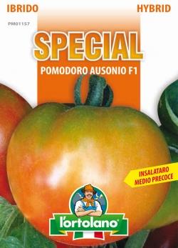 POMODORO Ausonio F1