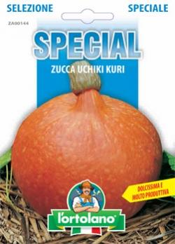 ZUCCA UCHIKI KURI