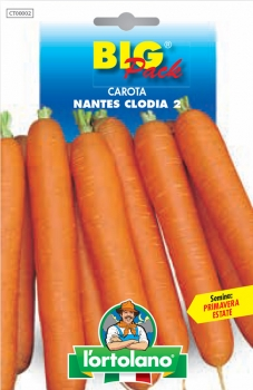 CAROTA Nantes Clodia 2