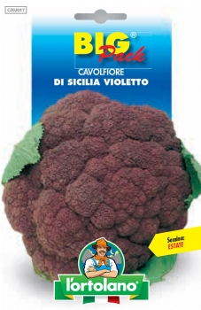 CAVOLFIORE di Sicilia violetto