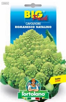 CAVOLFIORE Romanesco Natalino