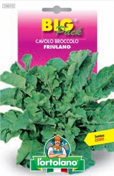 CAVOLO Broccolo Friulano