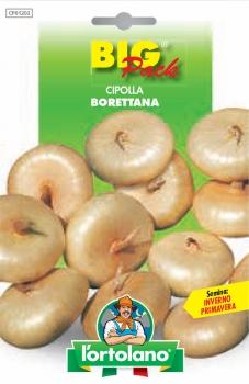 CIPOLLA Borettana