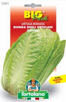 LATTUGA ROMANA Bionda degli ortolani (estiva)
