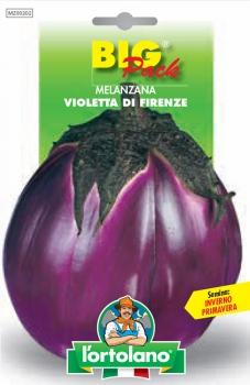 MELANZANA Violetta di Firenze