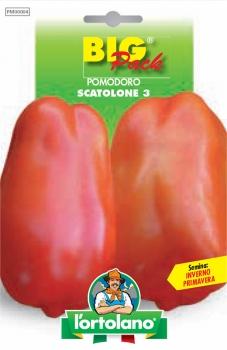 POMODORO Scatolone 3