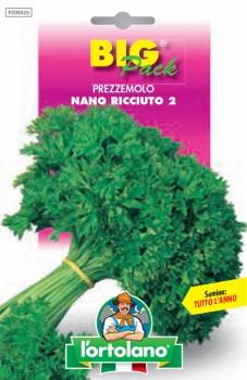 PREZZEMOLO Nano ricciuto 2