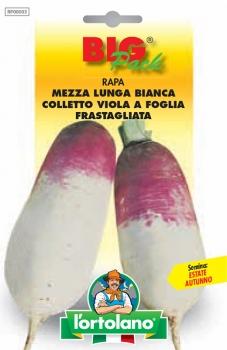 RAPA Mezza Lunga Bianca Colletto Viola a Foglia Frastagliata