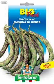 FAGIOLO nano Anellino di Trento
