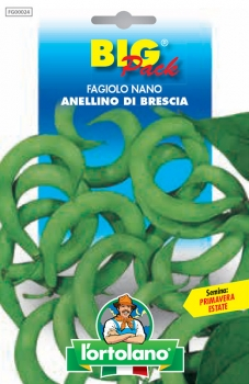 FAGIOLO nano Anellino di Brescia