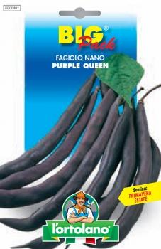 FAGIOLO nano Purple Queen