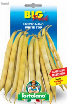 FAGIOLO Nano White Top