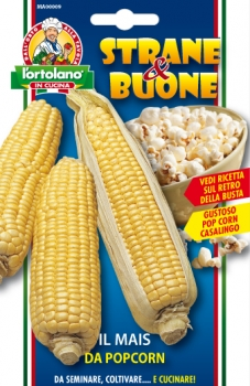 Mais da popcorn