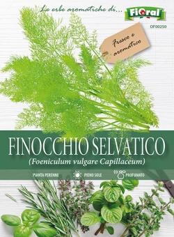 FINOCCHIO SELVATICO