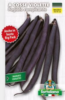 FAGIOLO rampicante a cosse violette (Trionfo Violetto)