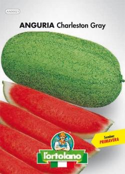 ANGURIA Charleston Gray