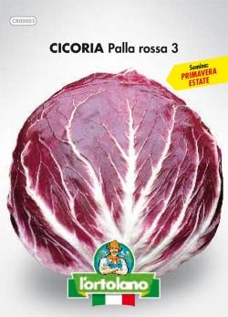 CICORIA Palla rossa 3