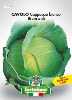 CAVOLO Cappuccio bianco Brunswick