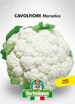 CAVOLFIORE Marzatico
