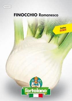 FINOCCHIO Romanesco