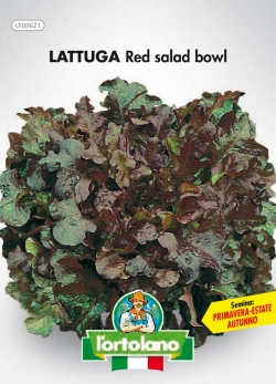 LATTUGA Red salad bowl