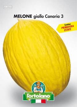 MELONE giallo Canaria 3