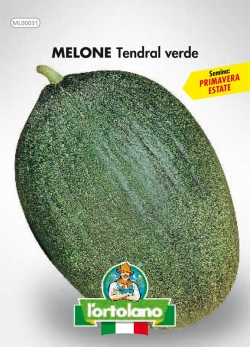 MELONE Tendral verde