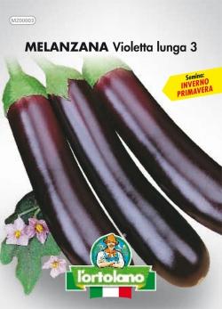 MELANZANA Violetta lunga 3