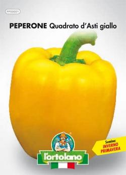 PEPERONE Quadrato d'Asti giallo