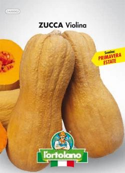 ZUCCA Violina