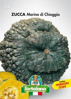 ZUCCA Marina di Chioggia