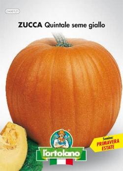 ZUCCA Quintale seme giallo