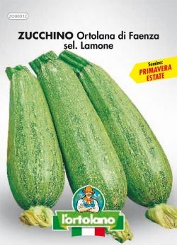 ZUCCHINO Ortolana di Faenza sel. Lamone
